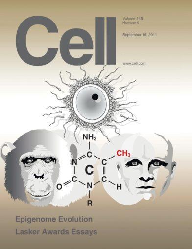 Cell Greg Hannon methylation Sept 2011