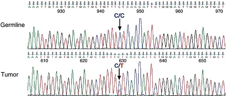 MS4A2 gene chart