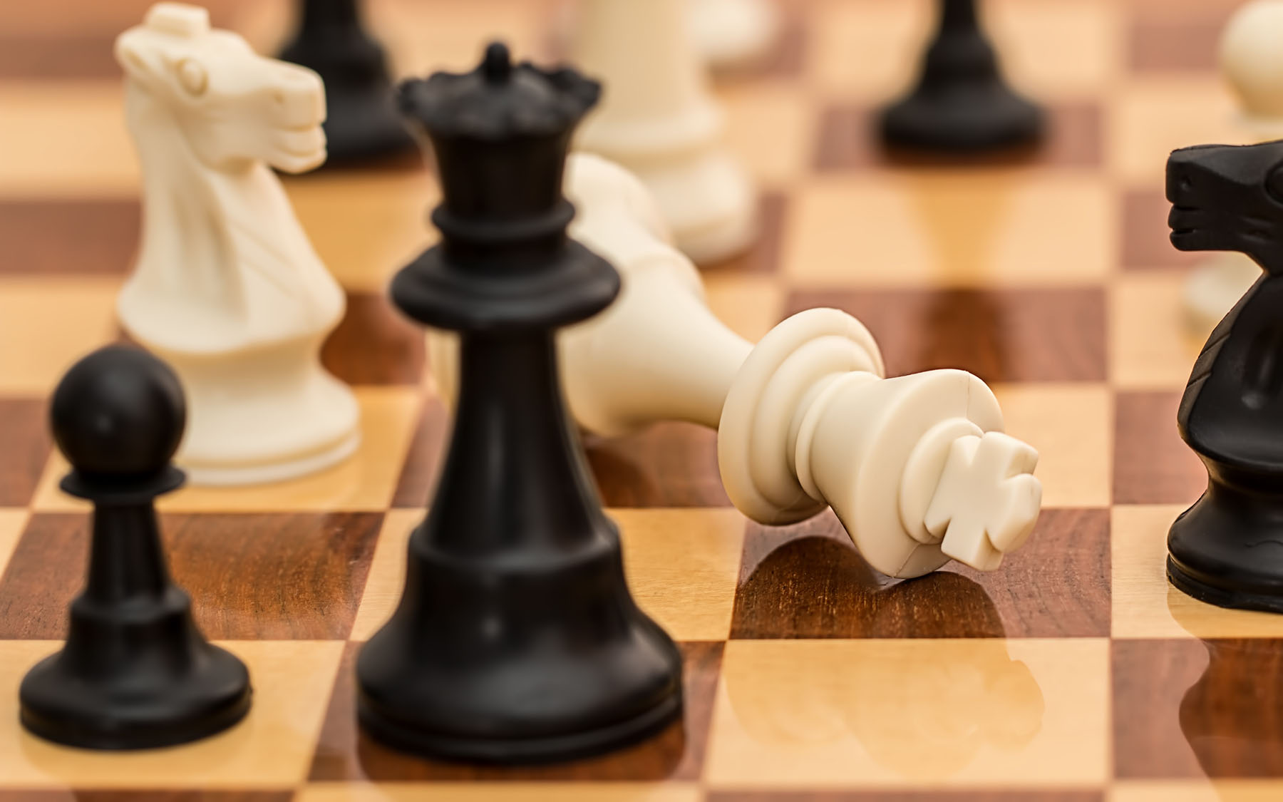 Chess and science mix for a good cause at Cold Spring Harbor