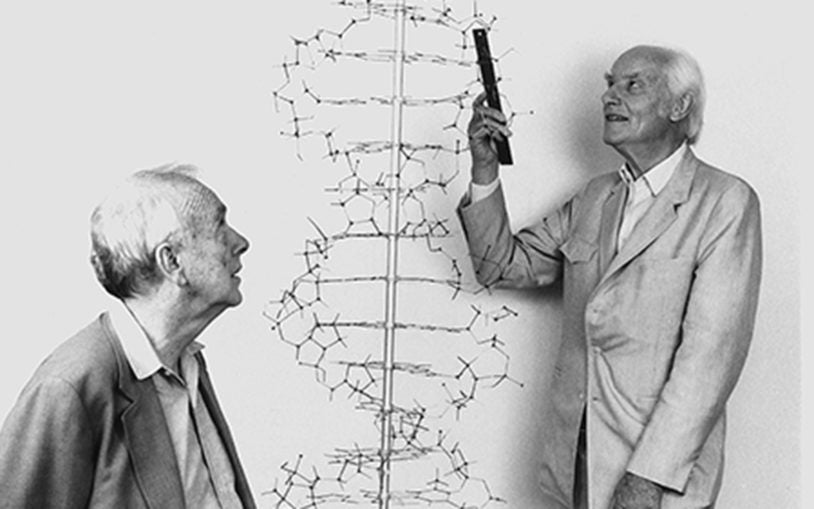 Letters shed new light on Nobel prizes for discovery of DNA's double helix structure