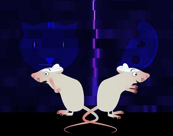cholinergic neurons mice