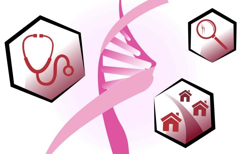 Breaking down breast cancer at CSHL