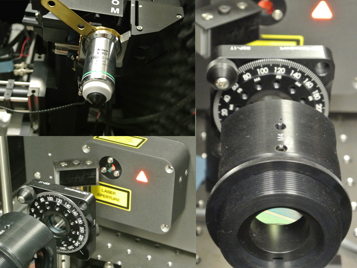 Two-photon laser scanning microscope
