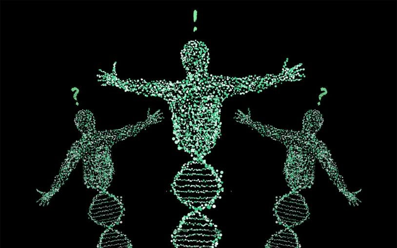 Dark matter of the genome, part 2