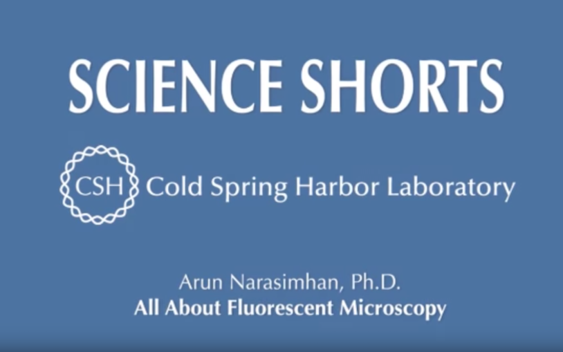 All about fluorescent microscopy