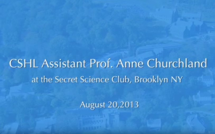 CSHL Assistant Professor Anne Churchland at the Secret Science Club, Brooklyn NY