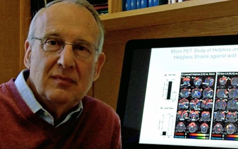 CSHL Professor Fritz Henn discusses the challenge of tracing depression's circuitry