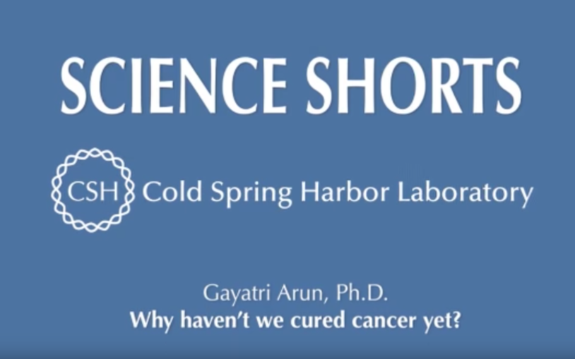 Why haven't we cured cancer yet?