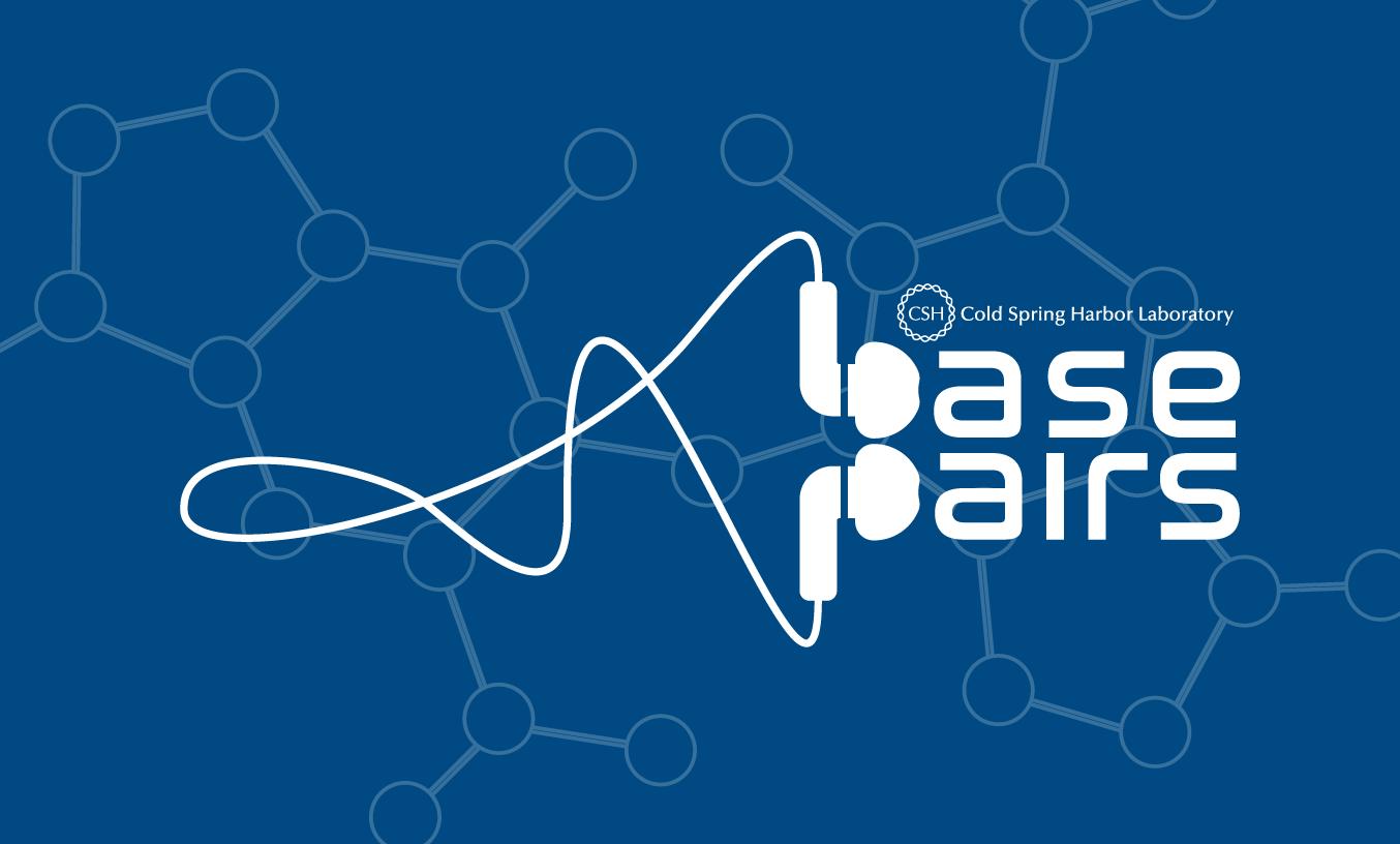graphic of BasePairs logo