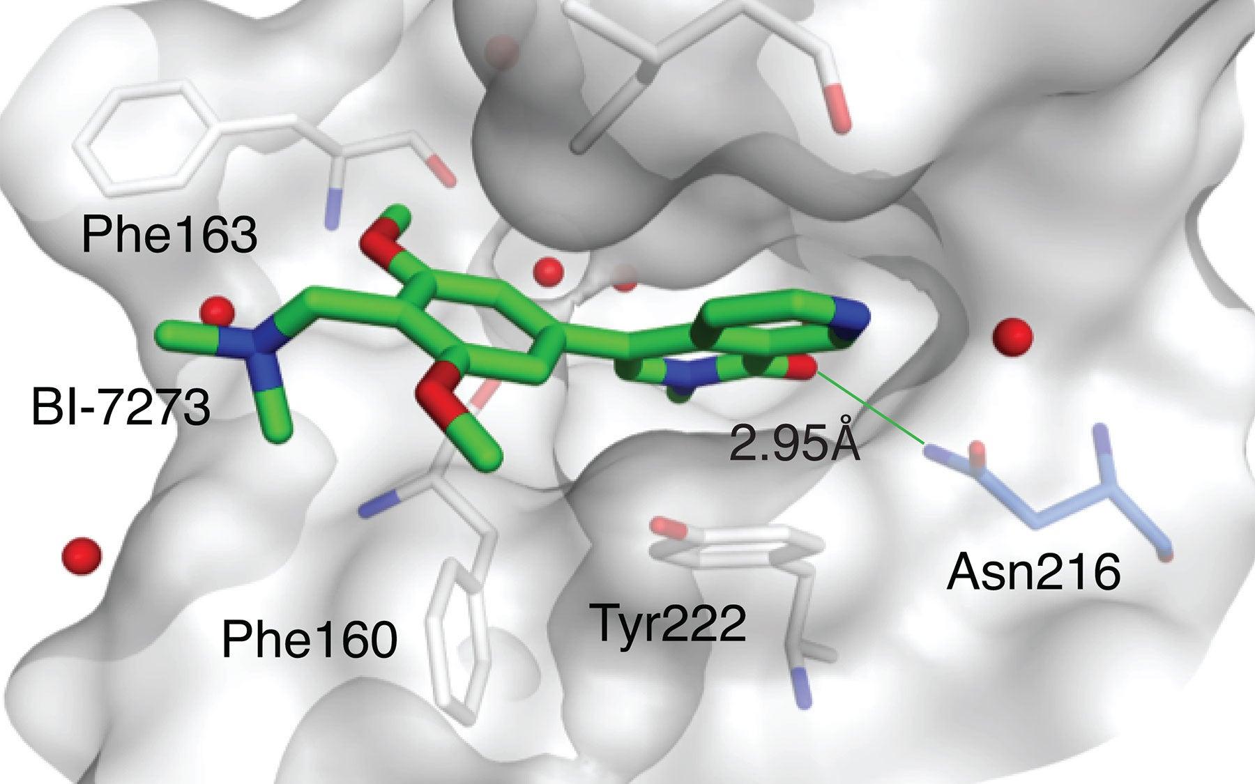 candidate drug BI-7273