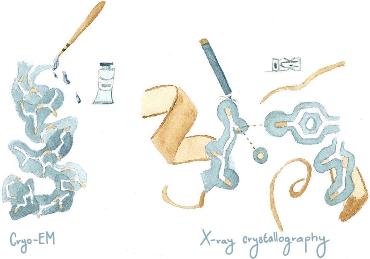 Cryo-EM watercolor