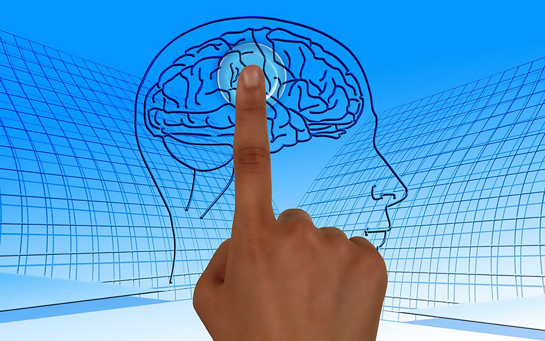 brain confidence