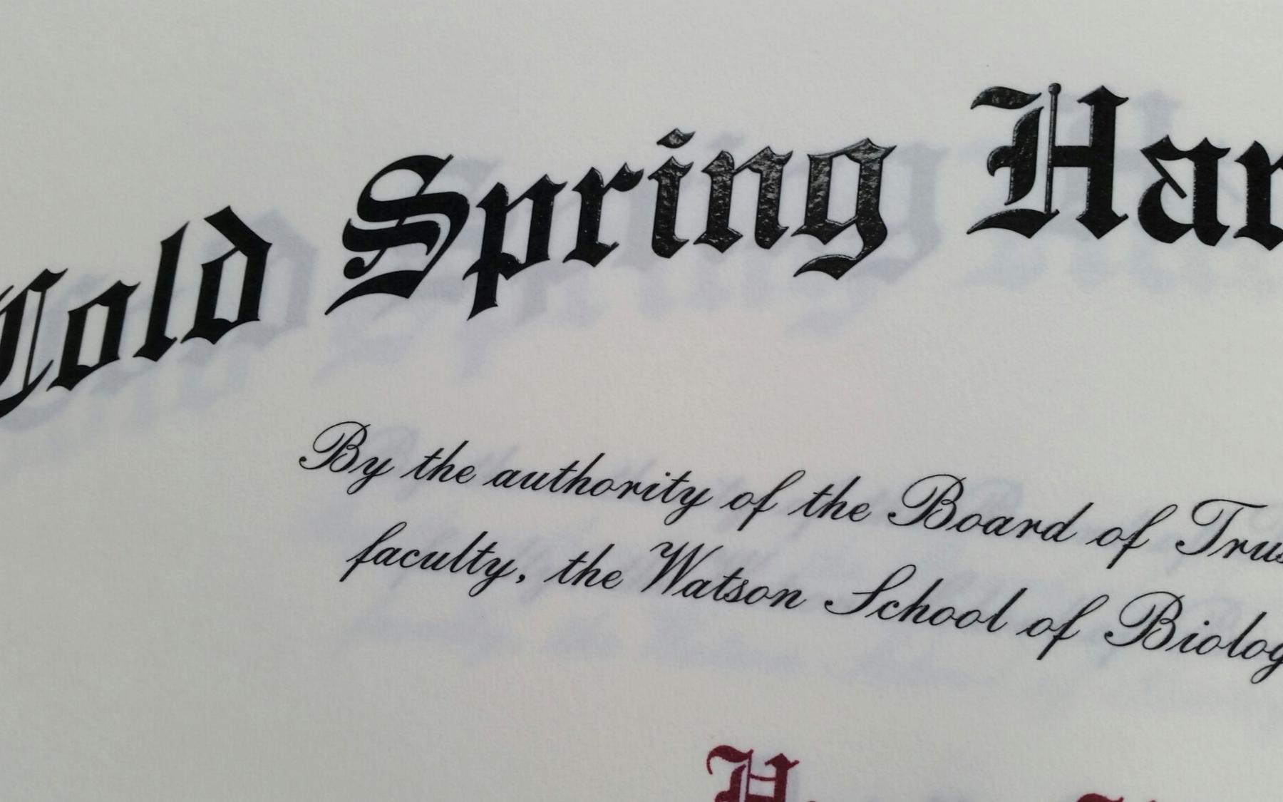 photo of WSBS diploma