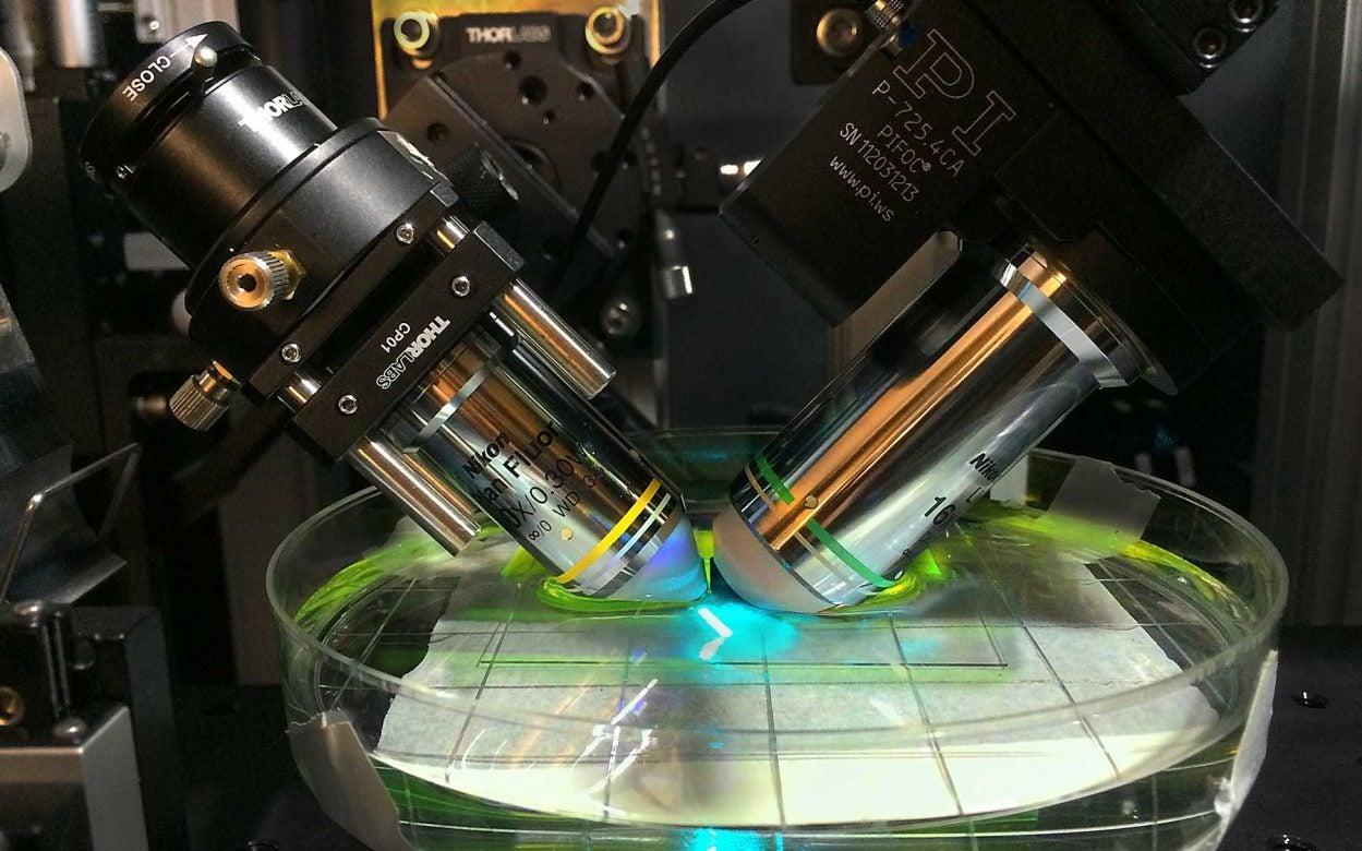 light-sheet microscopy