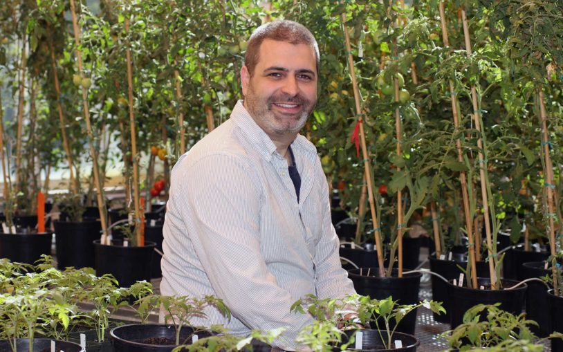 CSHL's Zachary Lippman named HHMI Investigator