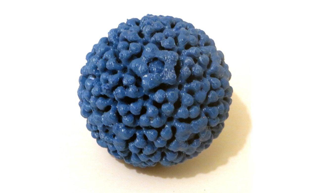 NIH HPV virus