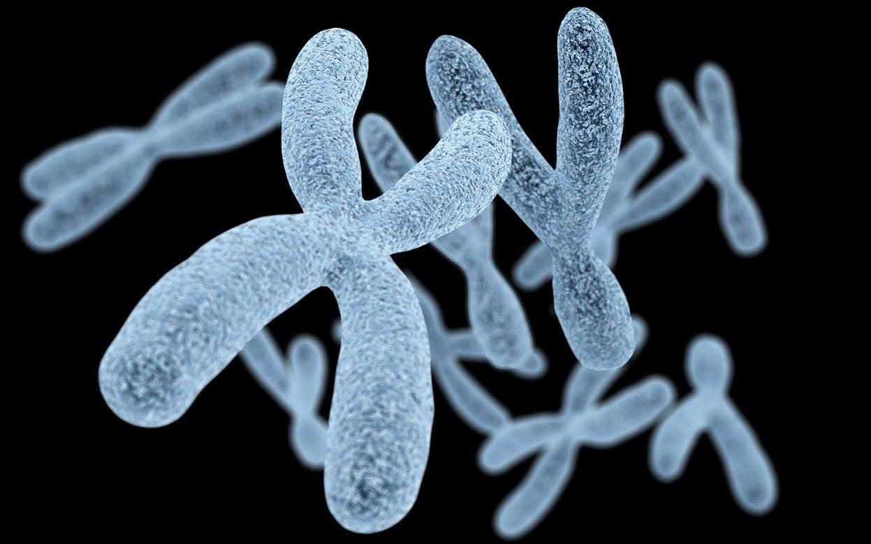 Base Pairs Podcast Chromosomes