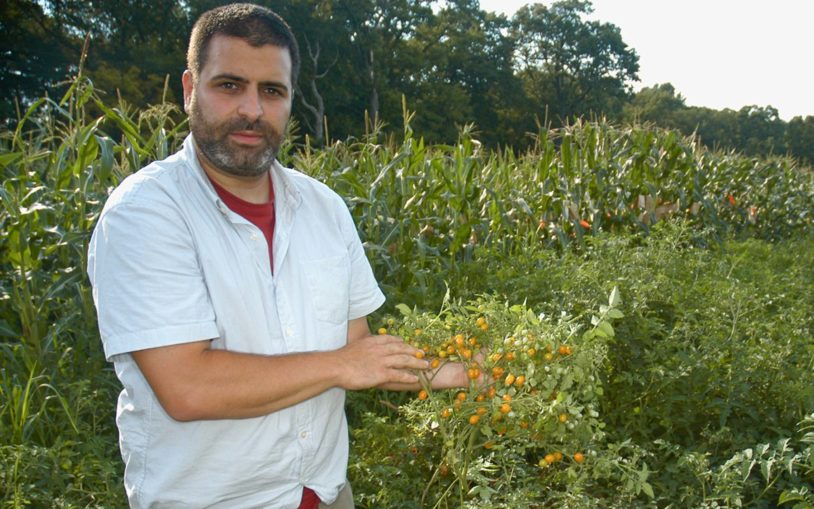 Getting more out of nature: Genetic toolkit finds new maximum for crop yields