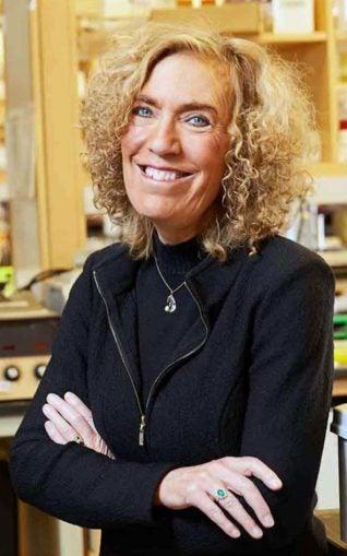Elaine Fuchs Ph.D.