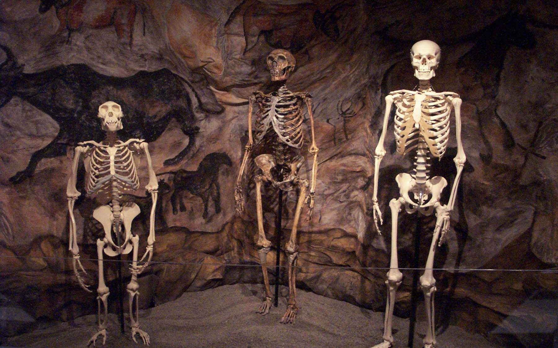 Ancient-Ancestry-Saturday-DNA-Event