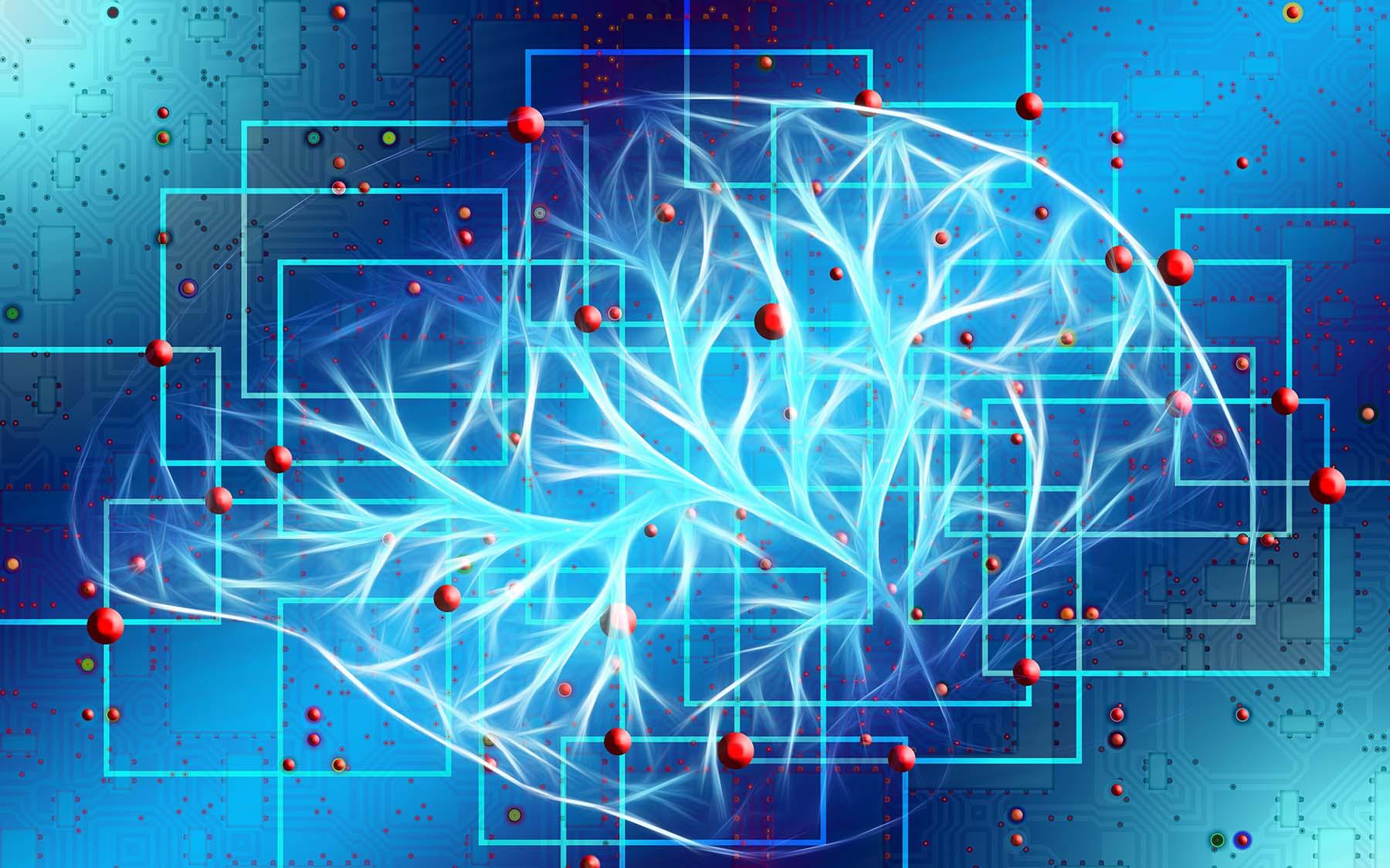 Brain neurons location
