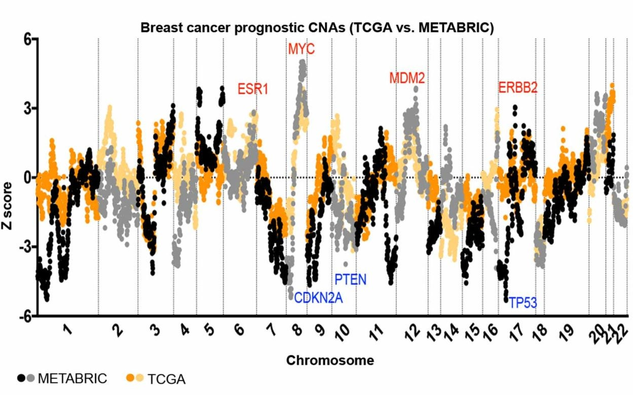 analysis chart of breast cancer patient gene