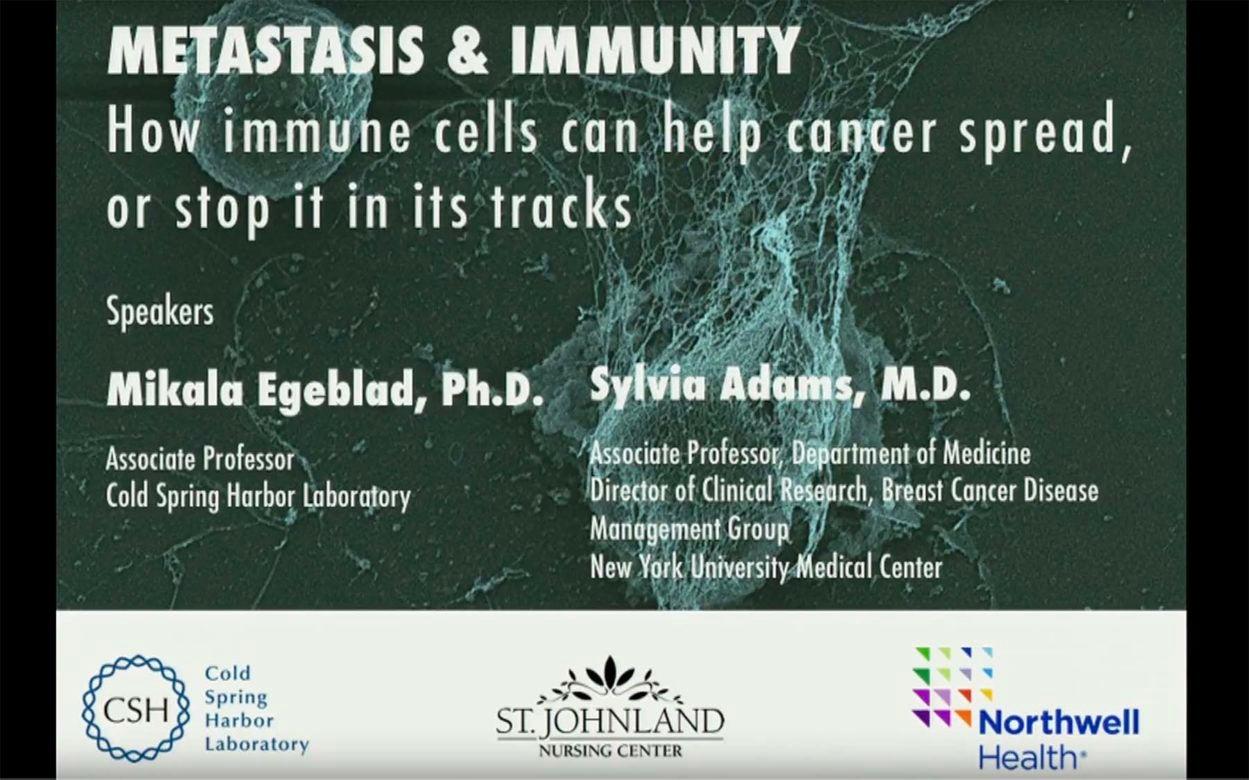 Egeblad Metastasis and immunity