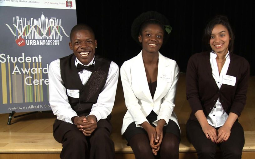 Urban Barcode Project Winners 2012