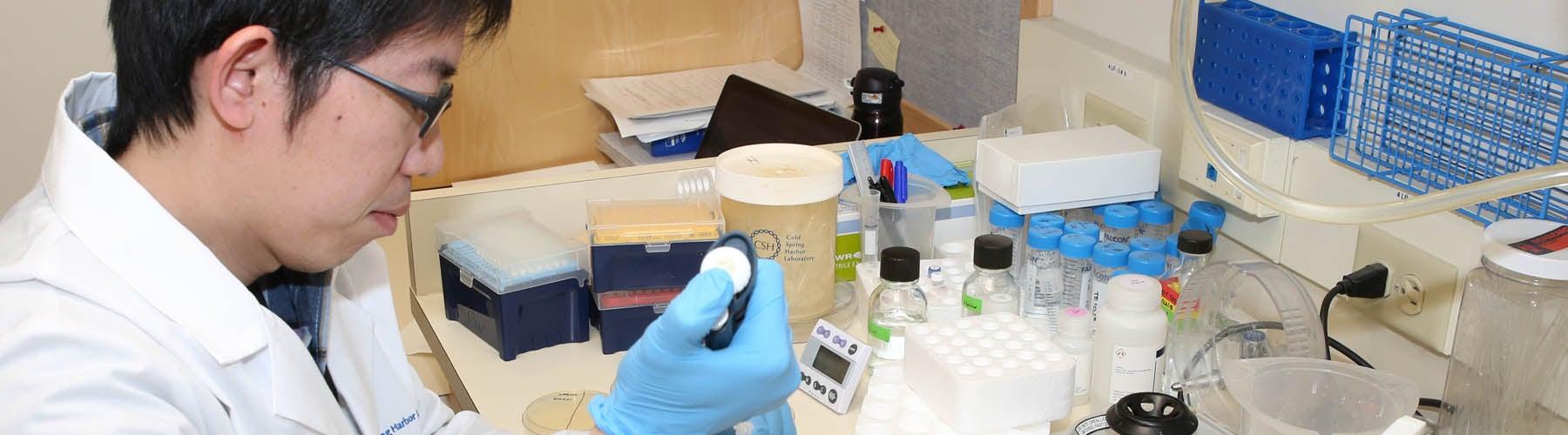 Rhabdomyosarcoma research