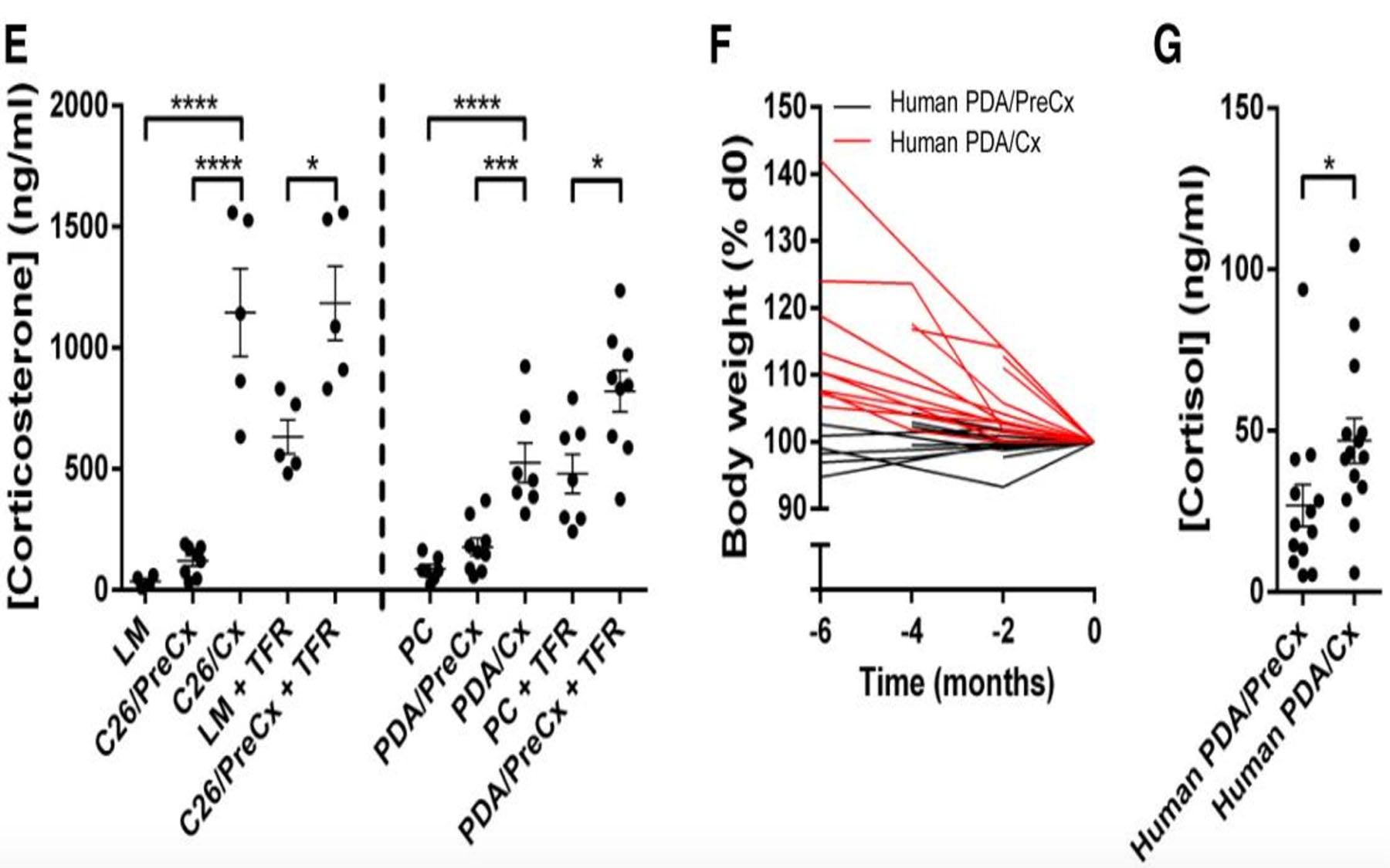 food restriction metabolic response