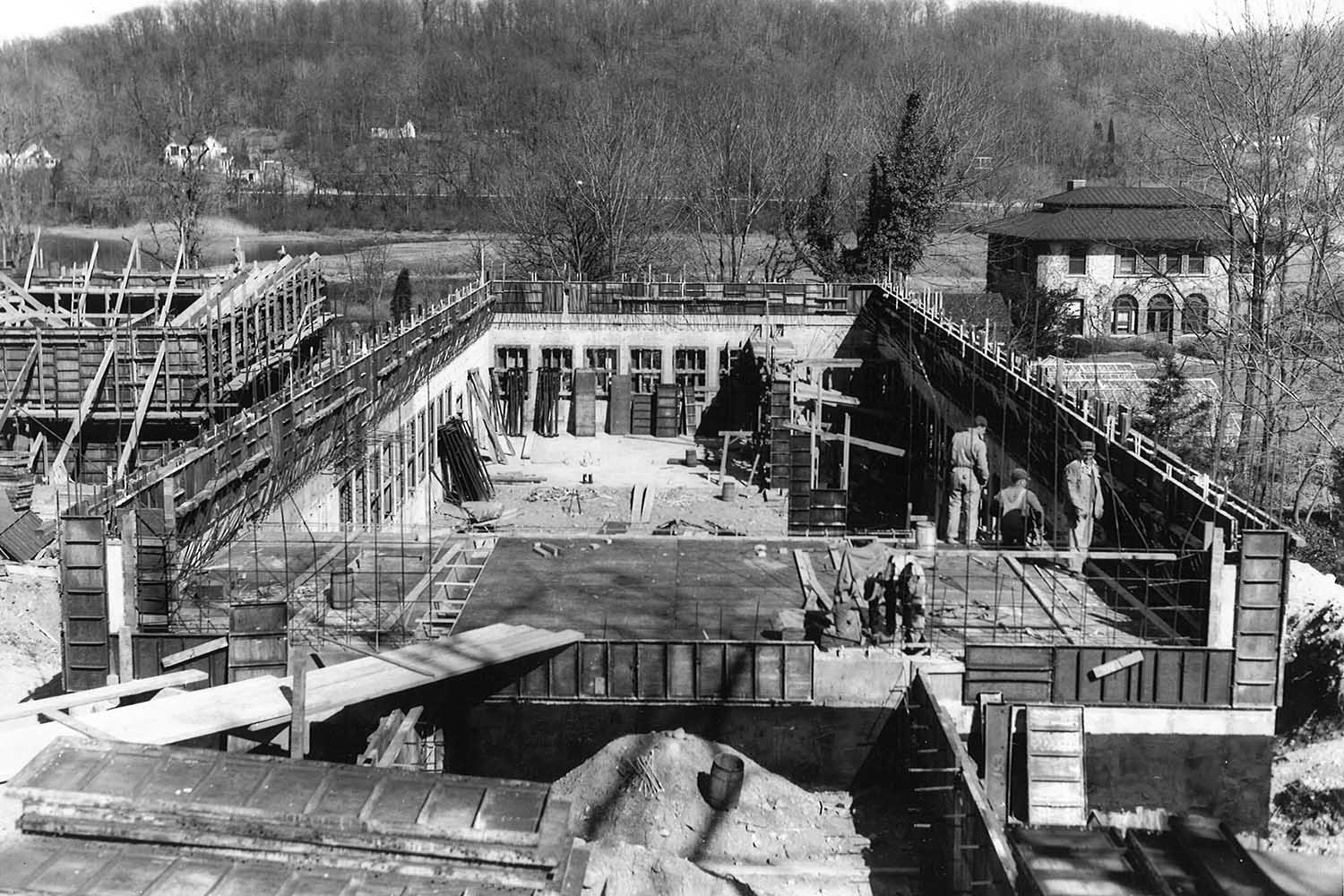 Demerec construction Nov 1951