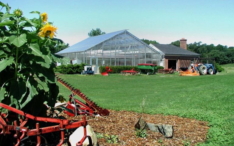 photo of Uplands farm greenhouse