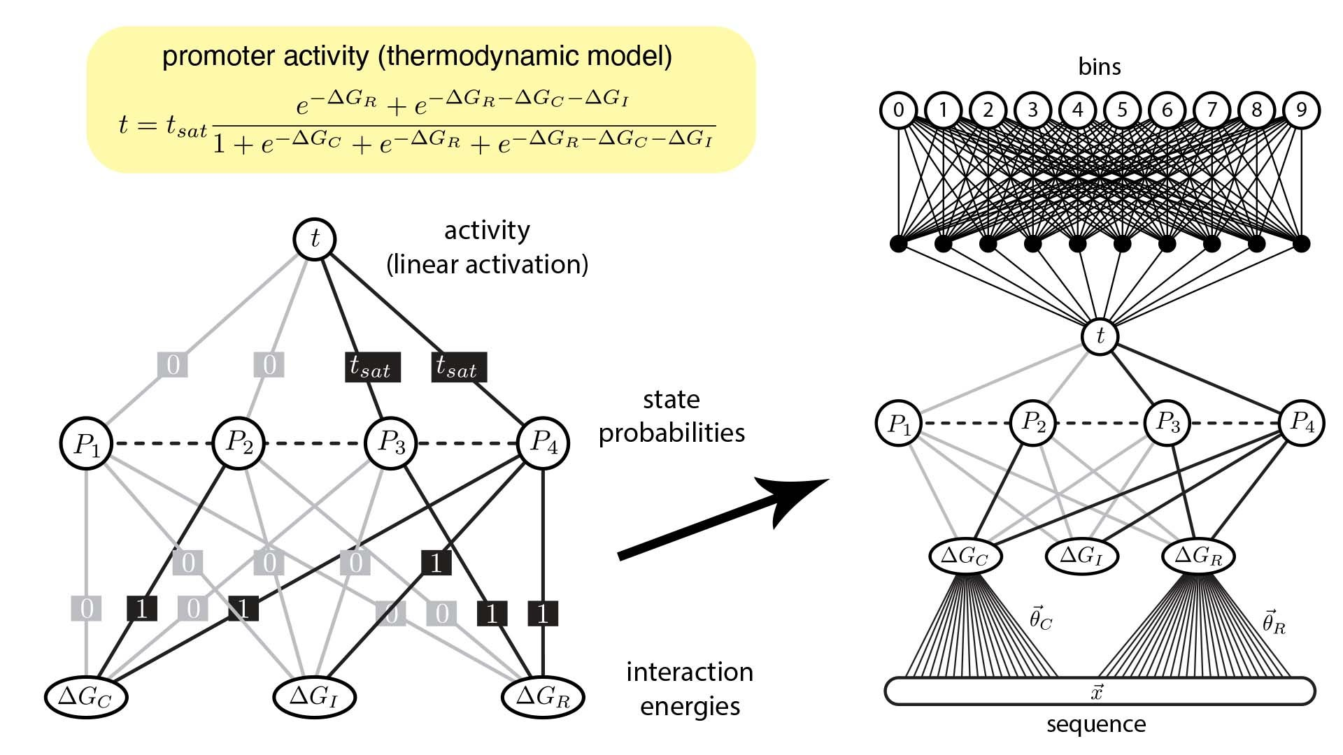graphic of the Artificial Neural Network (ANN)