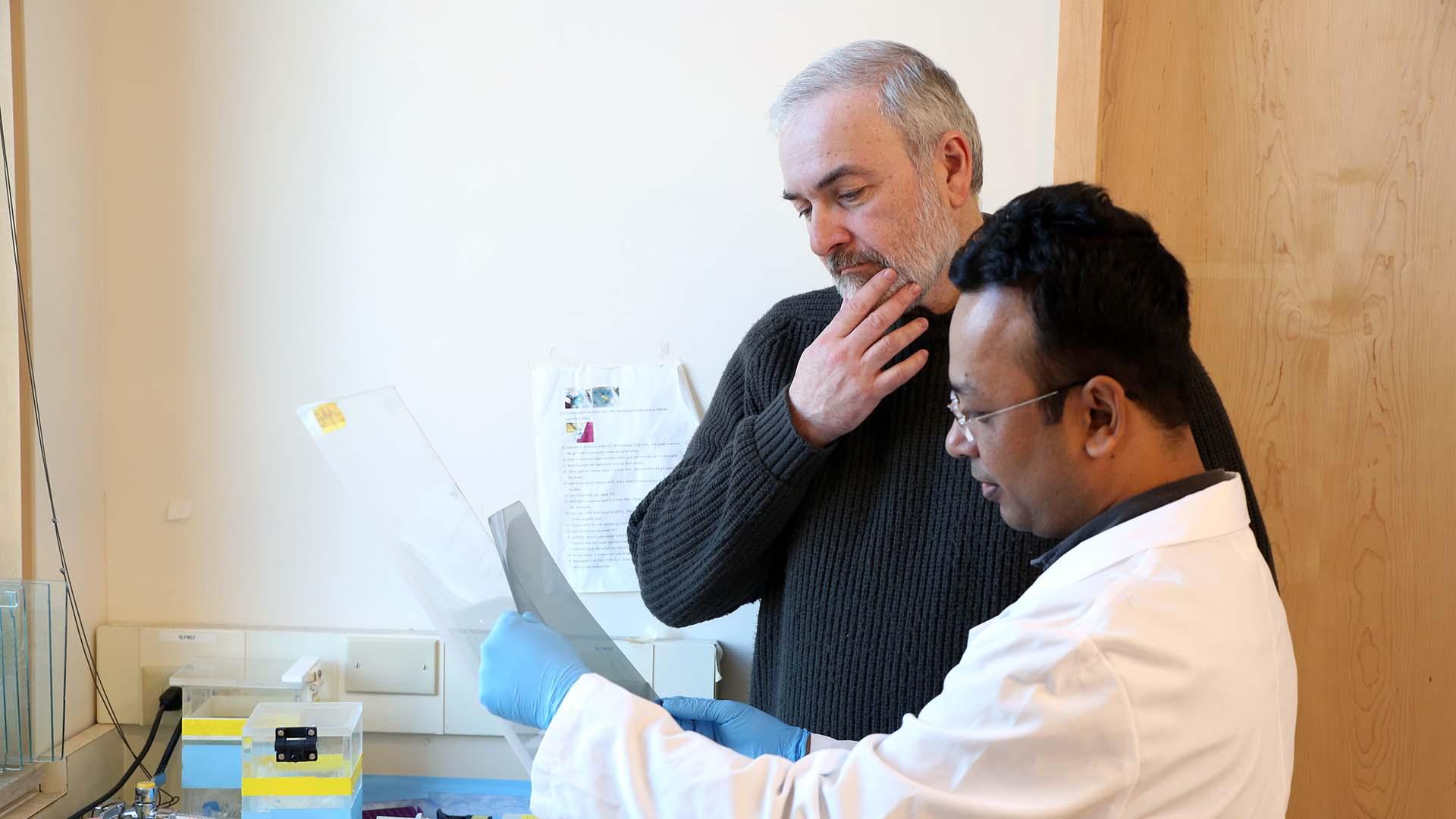 photo of Adrian Krainer and Mohammad Alinoor Rahman observing results