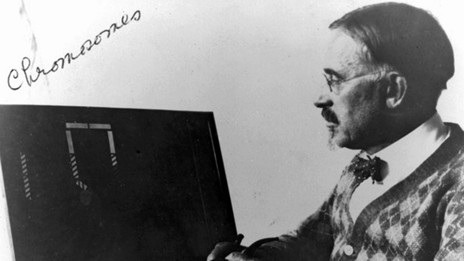photo of Albert Blakeslee from 1920s