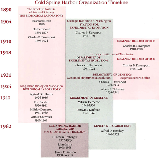 graphic of CIW Cold Spring Harbor Organizational timeline