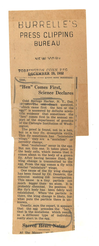 photo of press clipping about Chicken & Egg article