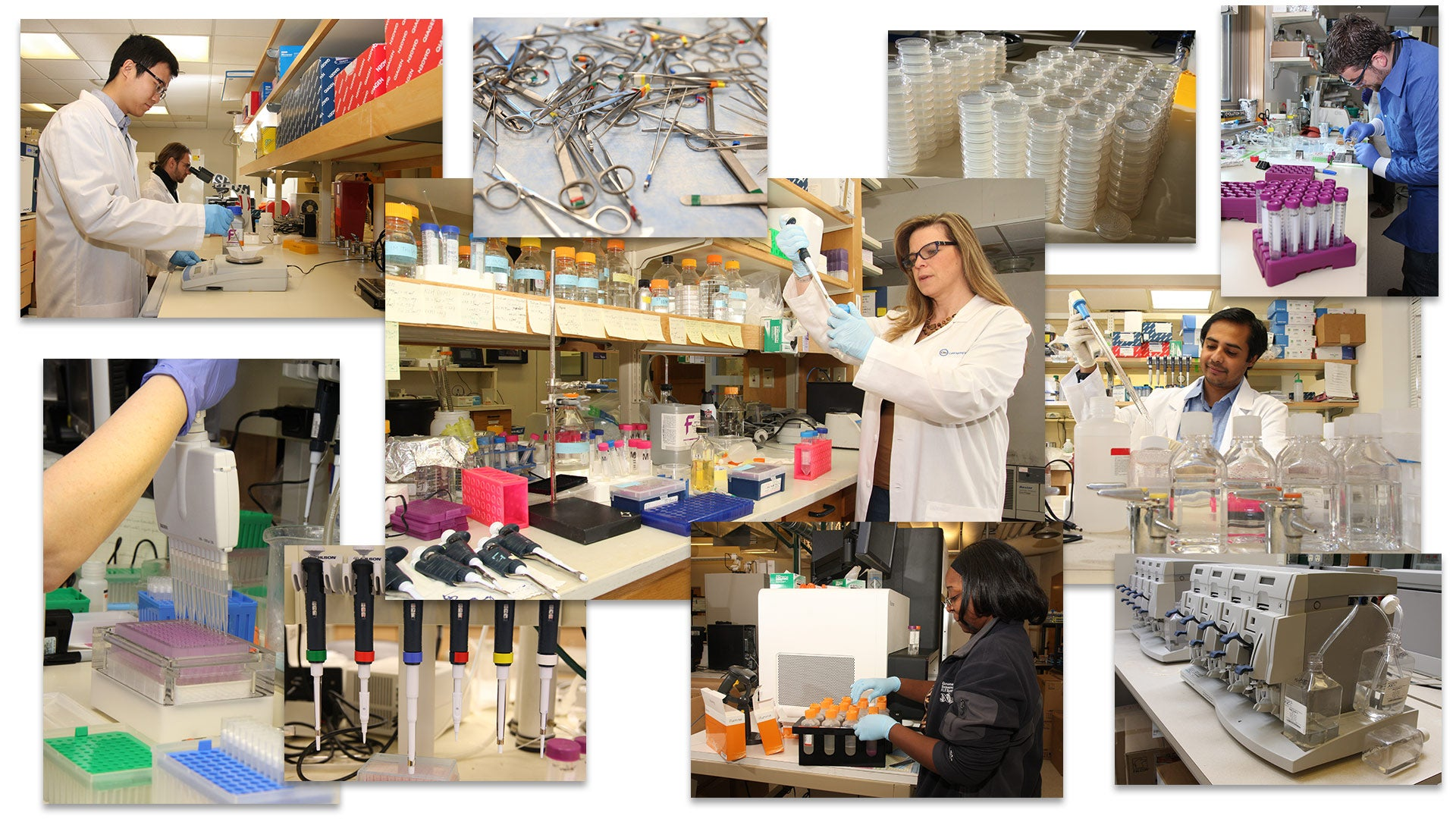 collaged photo of equipment and people using equipment