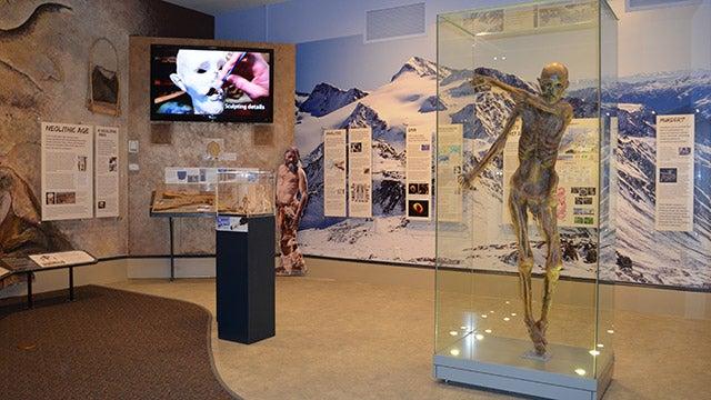 Saturday DNA! Virtual Museum Tour: Ötzi the Iceman