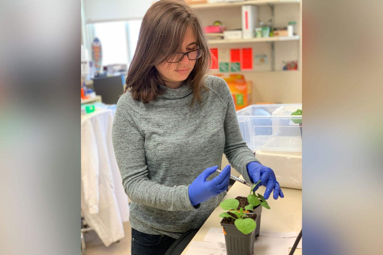 photo of Amanda Ackerman in lab