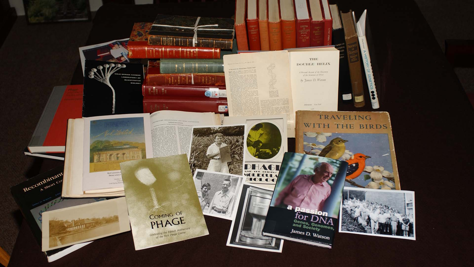 photo of book pile from Archives