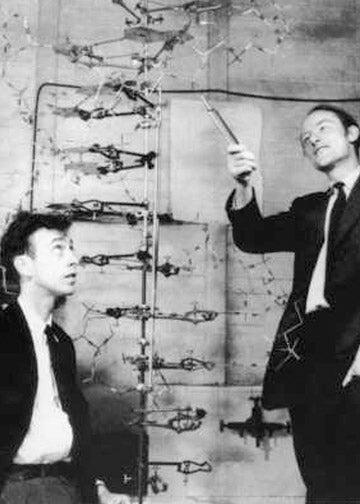 photo of Jim Watson and Francis Crick