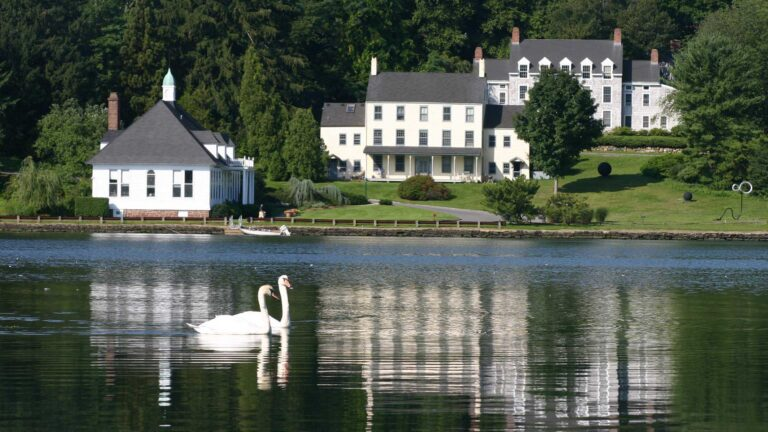 photo of CSHL campus from across the harbor