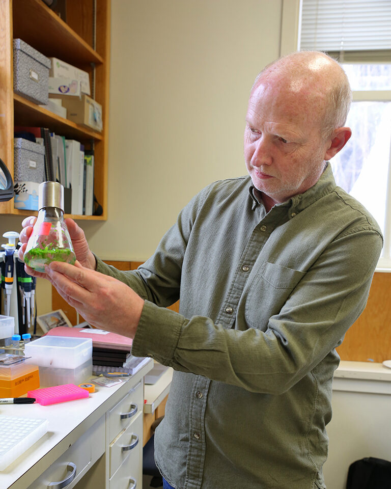 photo of Rob Martienssen in his lab