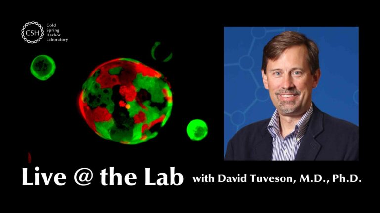 Hero image with organoid and Dr. David Tuveson for Live @ the Lab