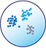 image of single-cell biology icon