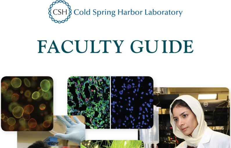 image of Faculty Guide cover