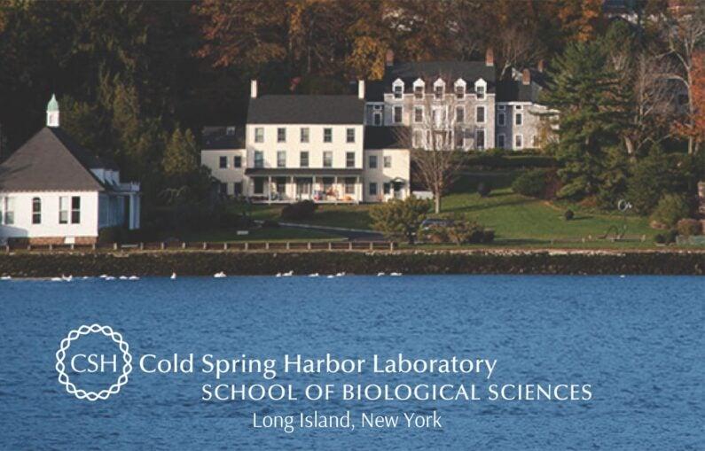 image of SBS Program Brochure cover