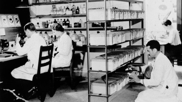 historic photo of workers in a lab