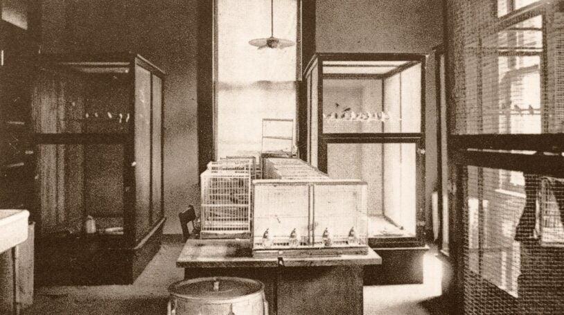 photo of breeding room